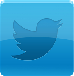 Custom Twitter Business Page Design